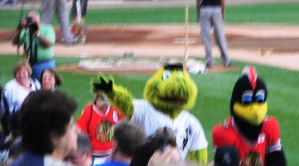 Southpaw & B-Hawks Mascot